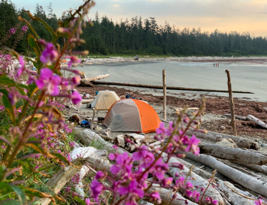 Tents on the beach on the North Coast Trail
