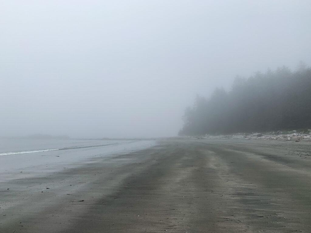 Fog at Shuttleworth Bight on the NorthCoast Trail