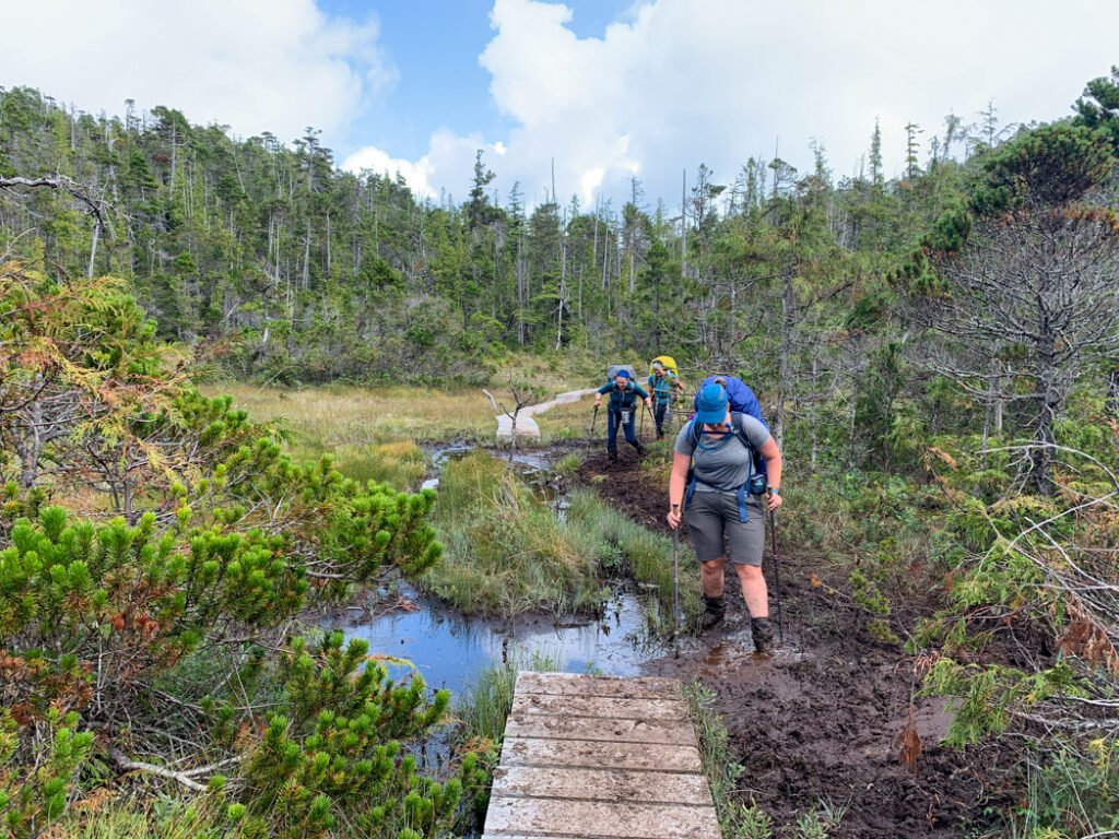 Hikers in the mud on the North Coast Trail
