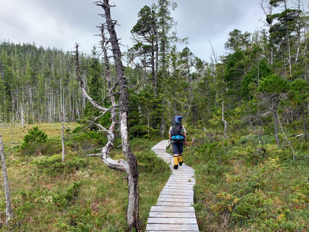 Hiker on a boardwalk on the North Coast Trail