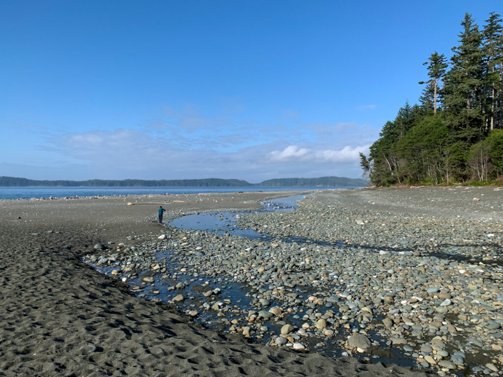 Beach at Skinner Creek on the North Coast Trail