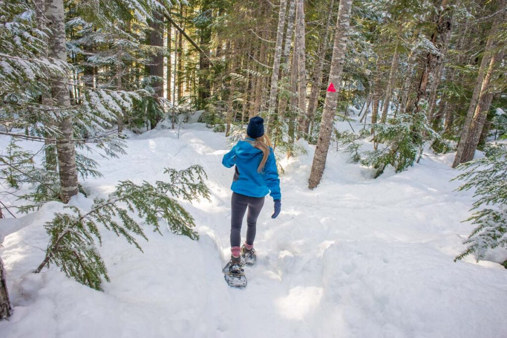 A woman snowshoeing through the forest near Canmore