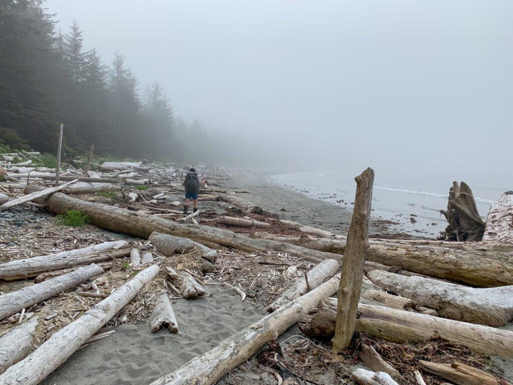 Hiking near Shuttleworth Bight on the North Coast Trail