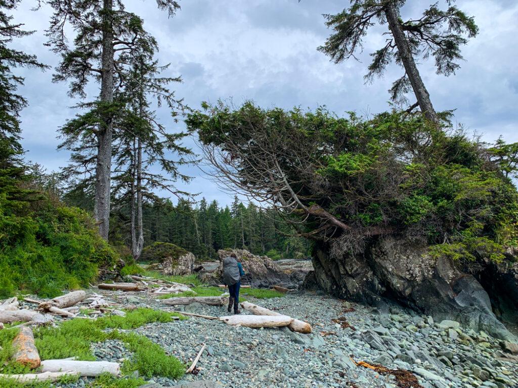 Pocket cove on the North Coast Trail